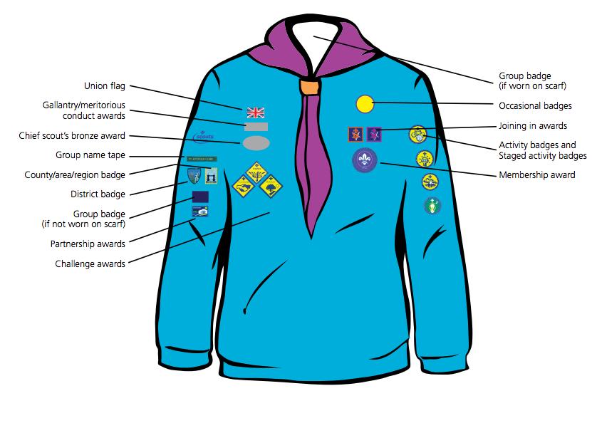 Beaver Badge Positions